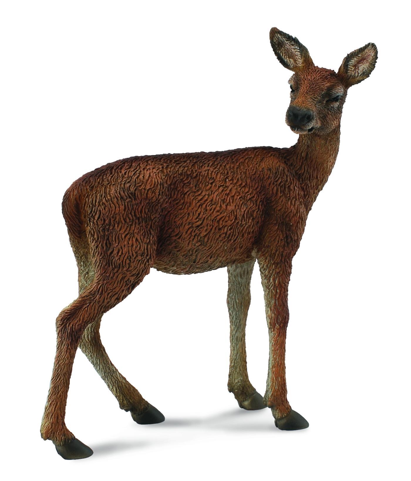 CollectA Fallow Deer mâle
