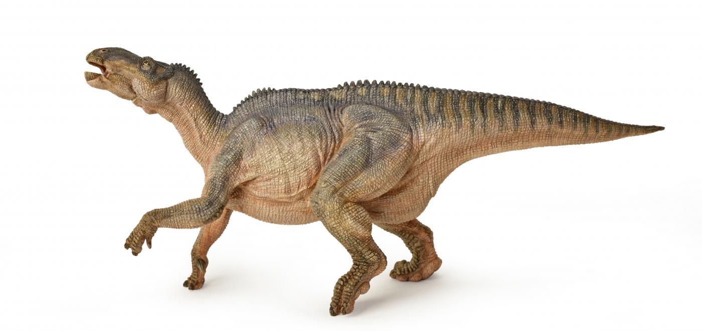 Papo T Rex And Oviraptor Gift Box