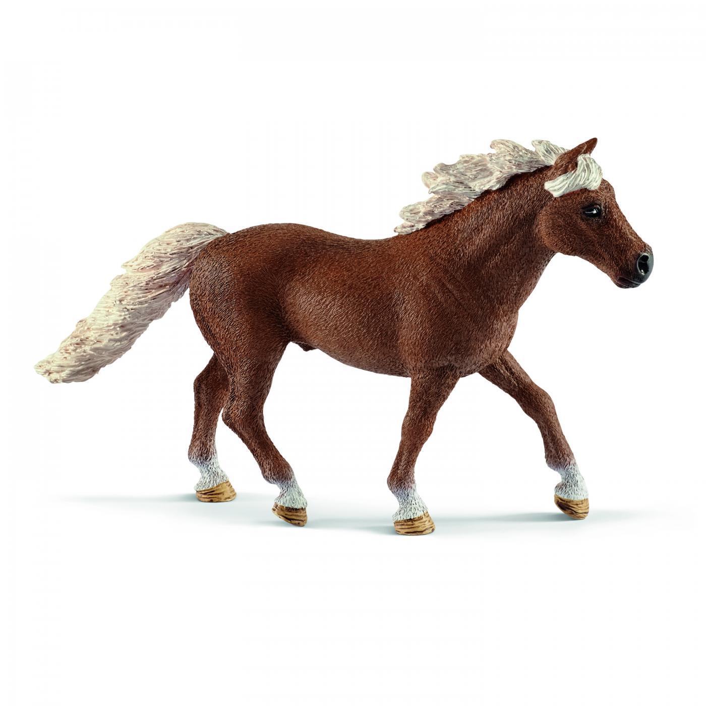 Schleich  42481 Pony Agility Training  Neuheit  2019