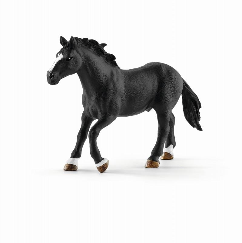 schleich pferde schleich set wildpferdreiten 41416