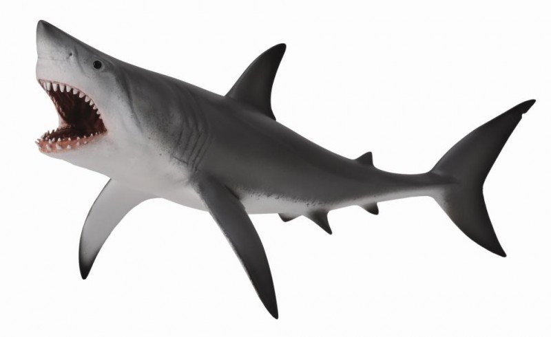 Cool Shark Toys : Collecta great white shark open jaw sea life