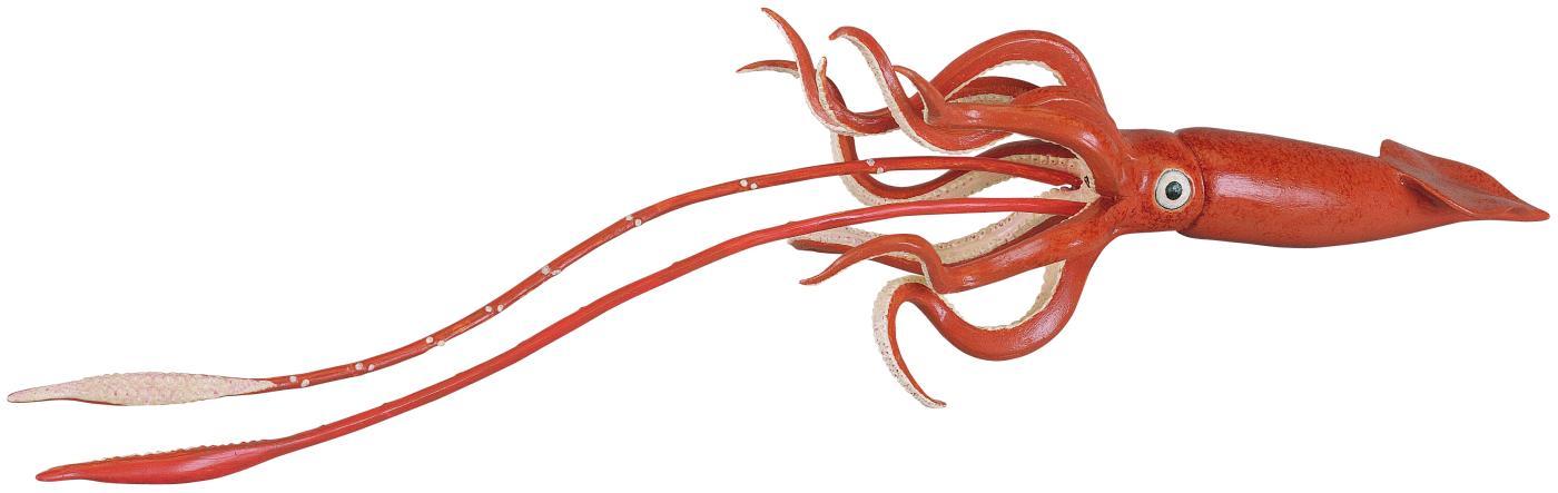 tintenfisch spiele